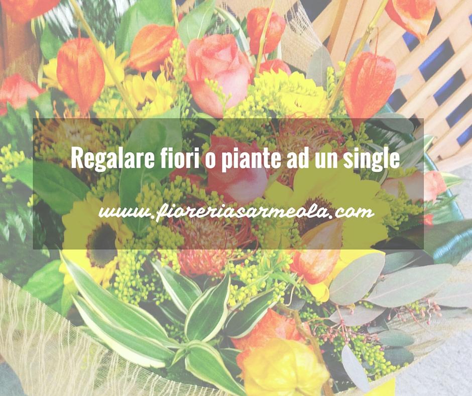 Regalare fiori e piante ad un single online a padova for Fiori e piante online
