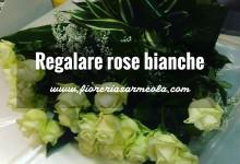 Regalare rose bianche