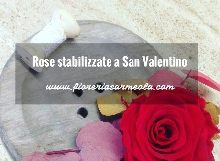Rose stabilizzate a San Valentino