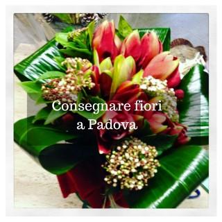 Consegnare fiori a Padova