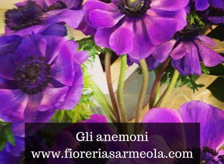 Gli anemoni in primavera