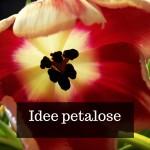Idee petalose