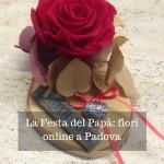 La Festa del Papà: fiori online a Padova