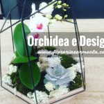 Orchidea e Design