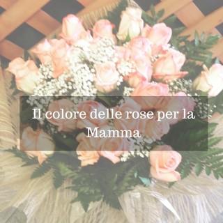 Il colore delle rose per la Mamma