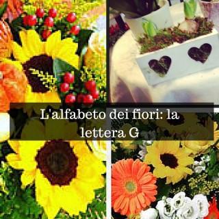 L'alfabeto dei fiori_ la lettera G