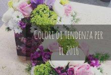 Colori di tendenza per il 2016