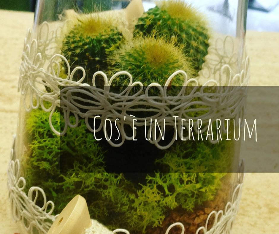 Matrimonio Tema Piante Grasse : Cos è un terrarium idee fiorite