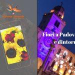 Fiori a Padova e dintorni: idee regalo a domicilio