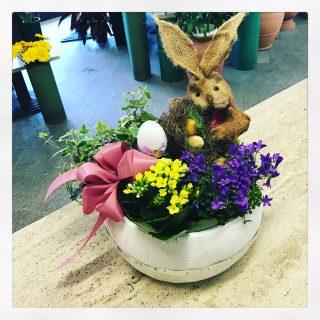 Composizione pasquale con coniglietto e piante fiorite