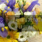 L'alfabeto dei fiori: la lettera I