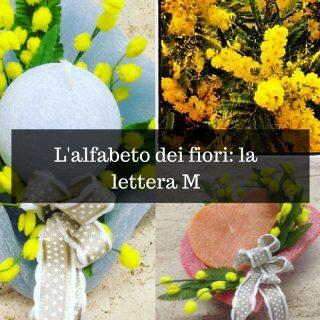 L'alfabeto dei fiori_ la lettera M