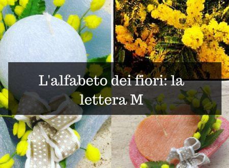 L'alfabeto dei fiori: la lettera M