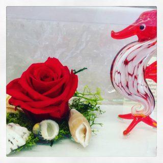 rosa stabilizzata a tema mare