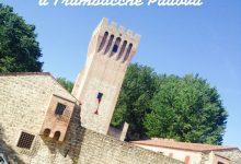 Castello di San Martino a Trambacche Padova