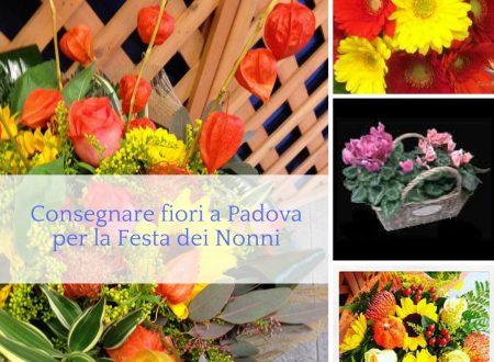 Consegnare fiori a Padova per la Festa dei Nonni