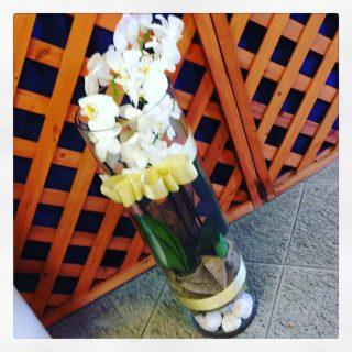 orchidea in vaso vetro