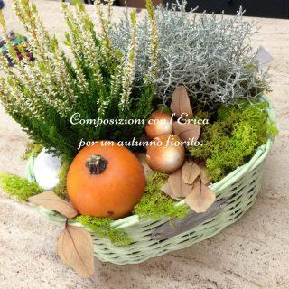 Composizioni con l'Erica per un autunno fiorito.