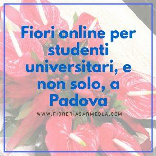 Fiori online per studenti universitari, e non solo, a Padova