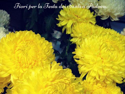 Fiori per la Festa dei Santi a Padova.