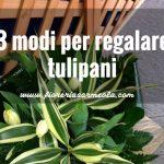 3 modi per regalare tulipani