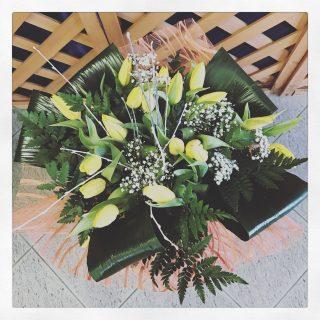 Sole d'Inverno, bouquet di tulipani gialli