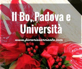 Il Bo, Padova e Università