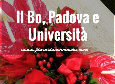 3 motivi per visitare il Bo, Padova e l'università