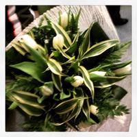 dama bianca bouquet tulipani bianchi