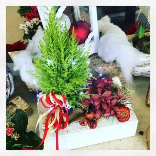 composizione natalizia con Led per decorazione
