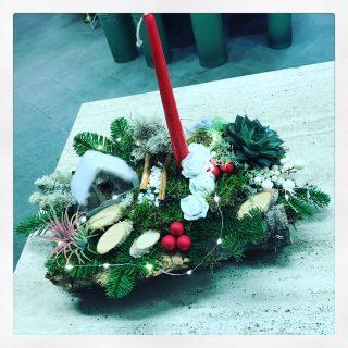 composizione Natale con sughero, succulente e led