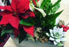 3 modi per augurare un dolce Natale