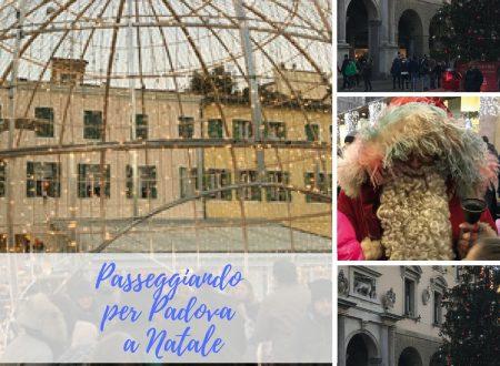 Passeggiando per Padova a Natale