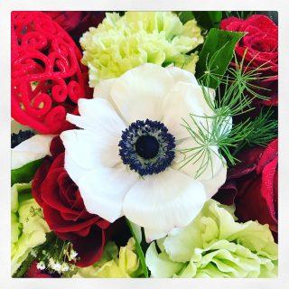Il fiore di anemone bianco.