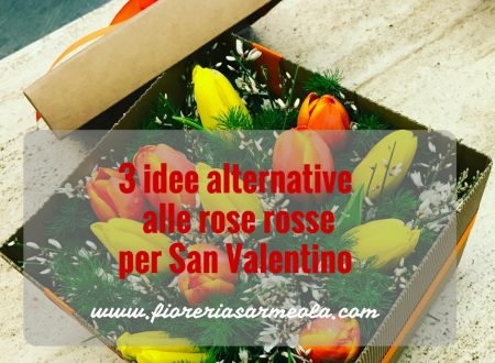 3 idee alternative alle rose rosse per San Valentino