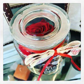 rosa stabilizzata, potpourri e vasetto in vetro