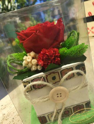rosa rossa stabilizzata per San Valentino