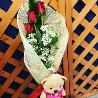 Rose rosse e peluches