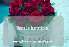 Rose in barattolo.