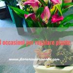 3 occasioni per regalare piante