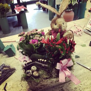Composizione con piante per Pasqua