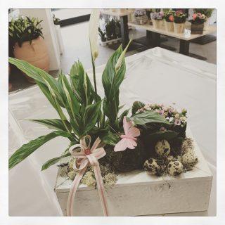 Composizione di piante per Pasqua decorate con uova, farfalle e coniglietti
