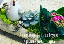 Composizioni con legno e piante per Pasqua