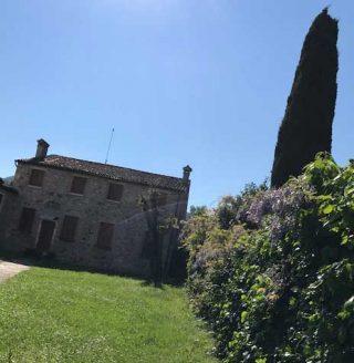 Esterno della Chiesa S.Sabino Torreglia