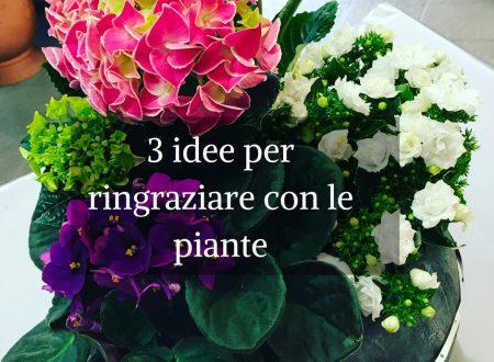 3 idee per ringraziare con le piante