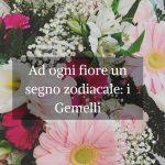Ad ogni fiore un segno zodiacale: i Gemelli