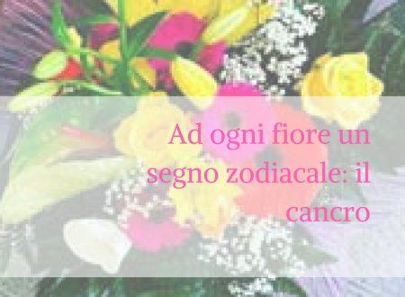 Ad ogni fiore un segno zodiacale: il cancro