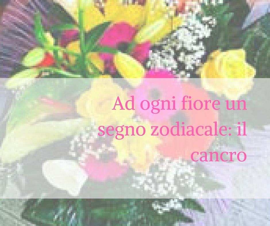 Tema Matrimonio Segni Zodiacali : Ad ogni fiore un segno zodiacale: il cancro idee fiorite