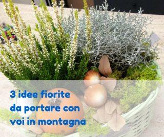 3 idee fiorite da portare con voi in montagna