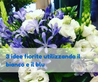 3 idee fiorite utilizzando il bianco e il blu